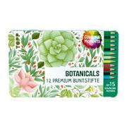 Cover-Bild zu frechverlag: Colorful Moments Designdose mit Buntstiften - Botanicals