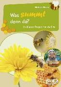 Cover-Bild zu Braun, Melanie: Was summt denn da?
