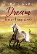 Cover-Bild zu Lark, Sarah: Dream - Frei und ungezähmt