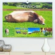 Cover-Bild zu VogtArt: Weideviecher, Kühe liebevolle Wiederkäuer (Premium, hochwertiger DIN A2 Wandkalender 2022, Kunstdruck in Hochglanz)