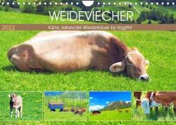 Cover-Bild zu VogtArt: Weideviecher, Kühe liebevolle Wiederkäuer (Wandkalender 2022 DIN A4 quer)