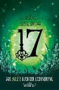Cover-Bild zu 17, Das zweite Buch der Erinnerung von Snow, Rose