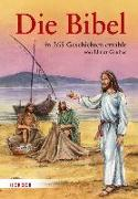 Cover-Bild zu Haysom, John (Illustr.): Die Bibel in 365 Geschichten erzählt