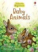 Cover-Bild zu Bone, Emily: Baby Animals