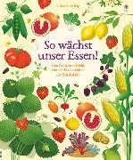 Cover-Bild zu Bone, Emily: So wächst unser Essen!