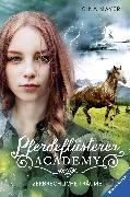 Cover-Bild zu Pferdeflüsterer-Academy, Band 5: Zerbrechliche Träume (eBook) von Mayer, Gina