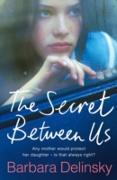 Cover-Bild zu Delinsky, Barbara: Secret Between Us (eBook)