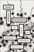 Cover-Bild zu Levin Becker, Daniel: Many Subtle Channels