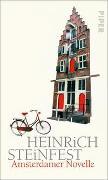 Cover-Bild zu Steinfest, Heinrich: Amsterdamer Novelle