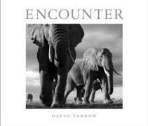 Cover-Bild zu Encounter von Yarrow, David