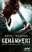 Cover-Bild zu Hearne, Kevin: Die Chronik des Eisernen Druiden 03. Gehämmert (eBook)