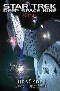 Cover-Bild zu Star Trek - Deep Space Nine: Gamma - Ursünde (eBook) von III., David R. George