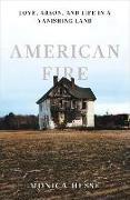 Cover-Bild zu Hesse, Monica: AMER FIRE