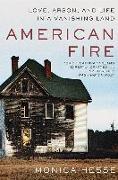 Cover-Bild zu Hesse, Monica: American Fire