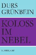 Cover-Bild zu Grünbein, Durs: Koloß im Nebel