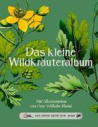 Cover-Bild zu Thomé, Otto Wilhelm (Illustr.): Das große kleine Buch: Das kleine Wildkräuteralbum