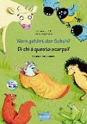 Cover-Bild zu Volk, Katharina E.: Wem gehört der Schuh?