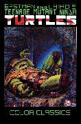 Cover-Bild zu Eastman, Kevin: Teenage Mutant Ninja Turtles Color Classics, Vol. 3
