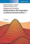 Cover-Bild zu Ansorge, Rainer: Mathematik in den Ingenieur- und Naturwissenschaften 1