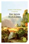 Cover-Bild zu Cooper, James Fenimore: Der letzte Mohikaner
