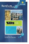 Cover-Bild zu Trio Geschichte/Erdkunde/Politik - Ausgabe 2008 für Niedersachsen
