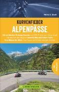 Cover-Bild zu Studt, Heinz E.: Kurvenfieber Alpenpässe