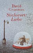 Cover-Bild zu Stichwort: Liebe (eBook) von Grossman, David