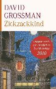 Cover-Bild zu Zickzackkind (eBook) von Grossman, David
