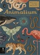 Cover-Bild zu Broom, Jenny: Animalium