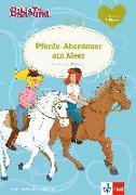 Cover-Bild zu Bibi & Tina - Pferde-Abenteuer am Meer von Bornstädt, Matthias von