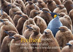 Cover-Bild zu Eschbacher Textkarte. Freiheit