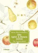 Cover-Bild zu Alte Apfel- & Birnensorten - Das Postkartenbuch von Pfau-Schellenberg, Gustav