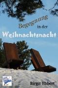 Cover-Bild zu Begegnung in der Weihnachtsnacht (eBook) von Ebbert, Birgit