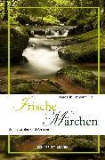 Cover-Bild zu Hetmann, Frederik (Hrsg.): Irische Märchen (eBook)