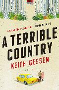 Cover-Bild zu Gessen, Keith: A Terrible Country (eBook)