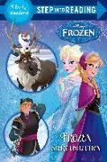 Cover-Bild zu Frozen Story Collection (Disney Frozen) von RH Disney