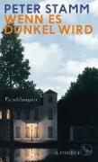 Cover-Bild zu Stamm, Peter: Wenn es dunkel wird (eBook)