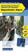 Cover-Bild zu Bauregger, Heinrich: Bayerische Alpen