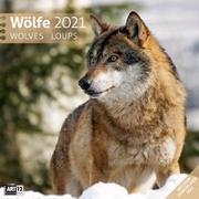 Cover-Bild zu Wölfe Kalender 2021 - 30x30 von Ackermann Kunstverlag (Hrsg.)