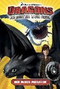 Cover-Bild zu Bratenstein, Jan (Übers.): Dragons - die Reiter von Berk 04. Der blinde Passagier