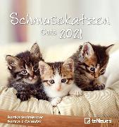 Cover-Bild zu Schmusekatzen 2021 - Postkarten-Kalender - Kalender-mit-Postkarten - zum-raustrennen - 16x17