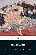 Cover-Bild zu The Moon and the Bonfires von Pavese, Cesare