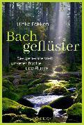 Cover-Bild zu Fokken, Ulrike: Bachgeflüster