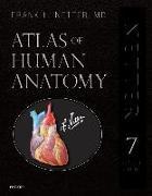 Cover-Bild zu Atlas of Human Anatomy, Professional Edition von Netter, Frank H.