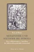 Cover-Bild zu Metaphysik und Methode bei Spinoza