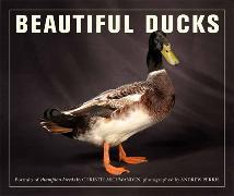 Cover-Bild zu Beautiful Ducks von Wright, Liz