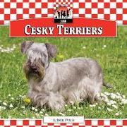Cover-Bild zu Petrie, Kristin: Cesky Terriers
