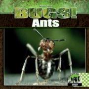 Cover-Bild zu Petrie, Kristin: Ants