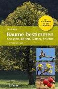 Cover-Bild zu Lüder, Rita: Bäume bestimmen - Knospen, Blüten, Blätter, Früchte