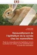 Cover-Bild zu Renouvellement de l''épithélium de la Cornée Chez Les Mammifères von Collectif